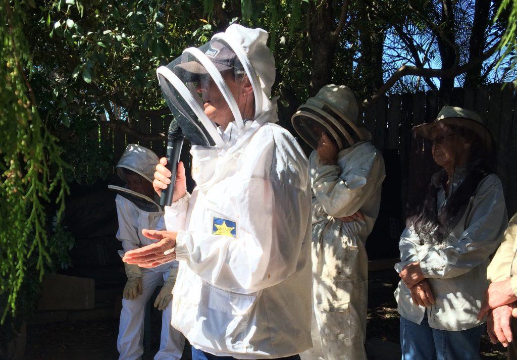 beekeepers wearing veils