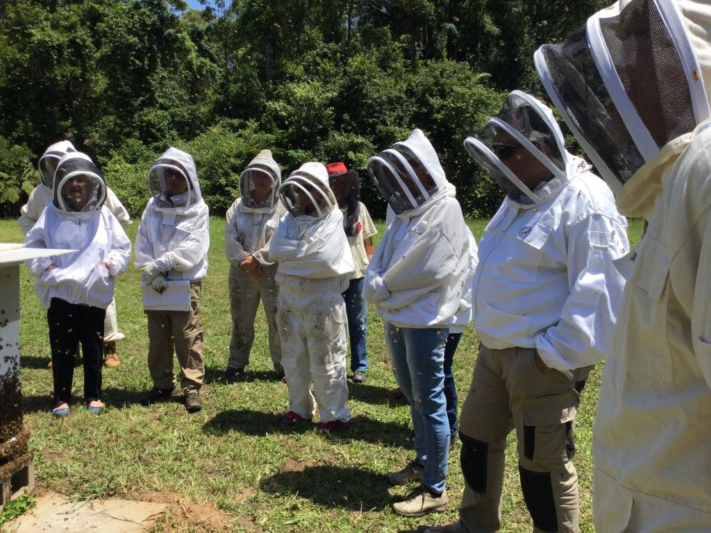 beekeeping courses and workshops
