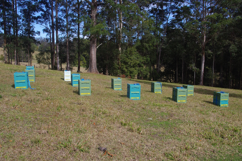 Beekeeping sites