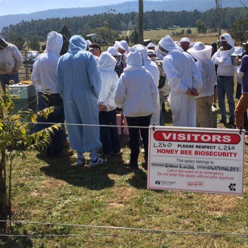 Mid North Coast Amateur Beekeepers