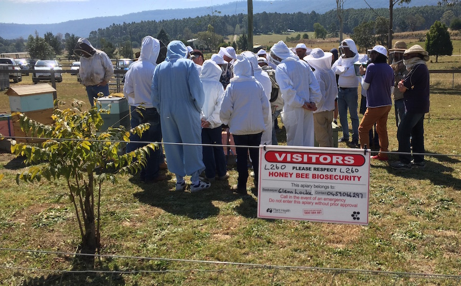 Mid North Coast Amateur Beekeepers