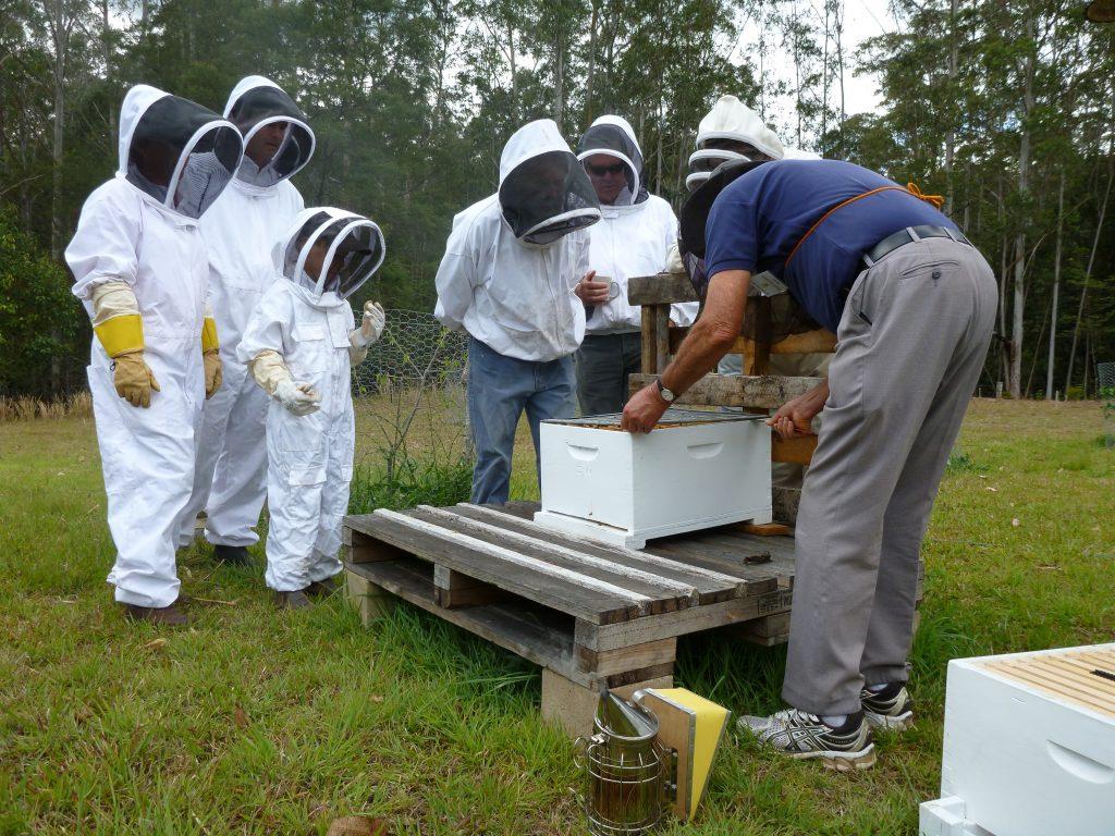 beekeeping clubs