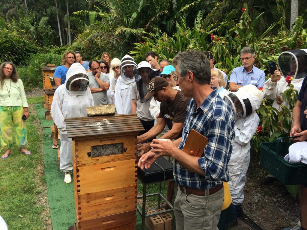 Inspecting a flowhive at a beekeeping club meeting