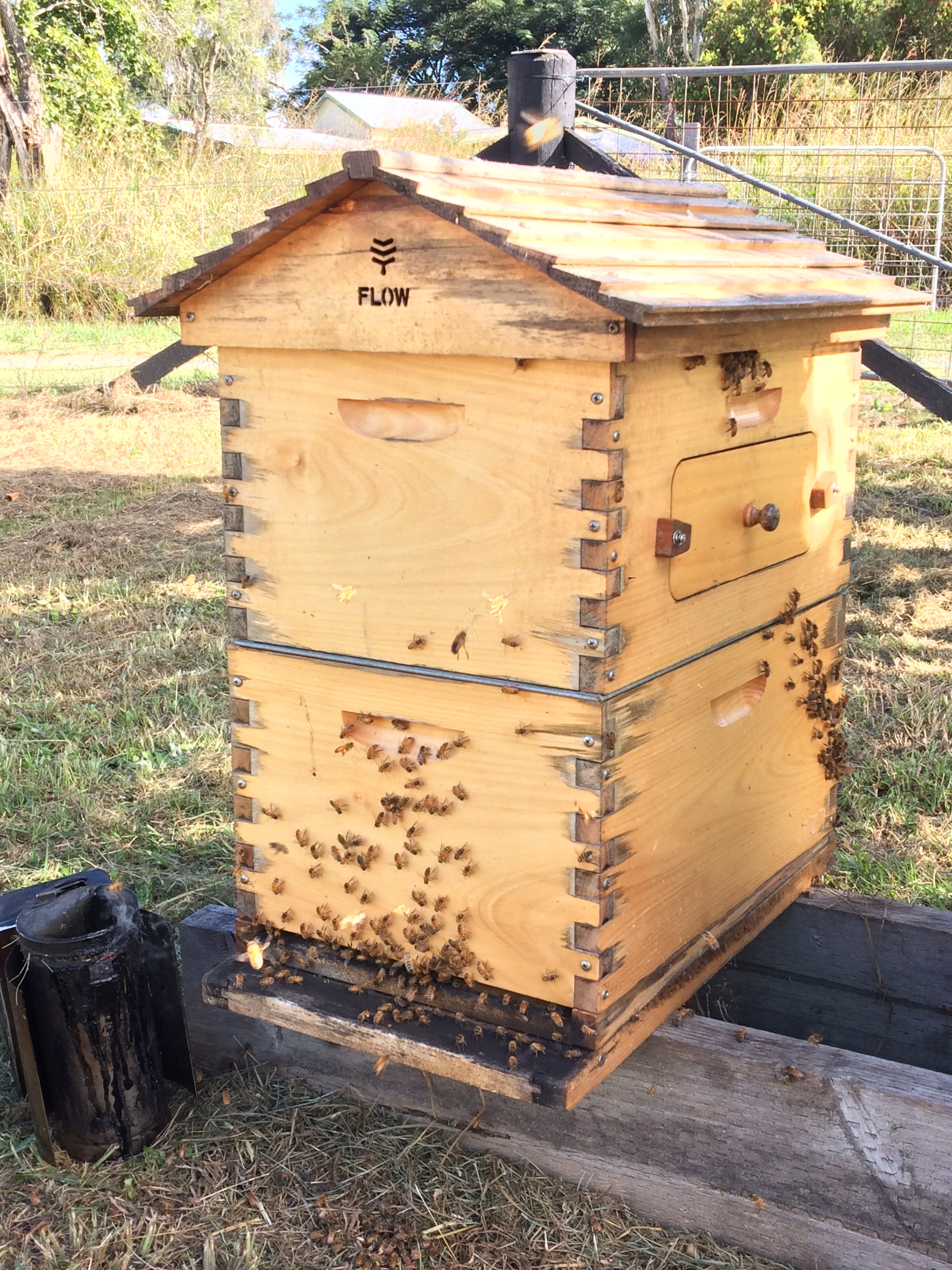 beekeeping course Flow hive