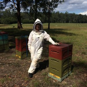 Our beekeeping workshops are one on one mentoring